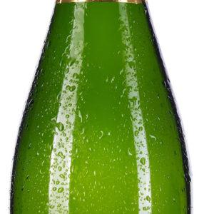 Champagne Brut 1er Cru Michel Rocourt