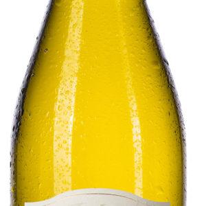 Wairau Valley - Sauvignon Blanc Vineyard